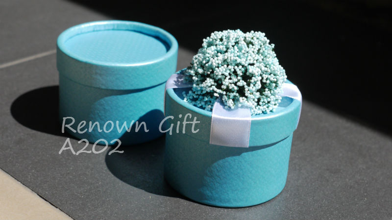 round candy box biru